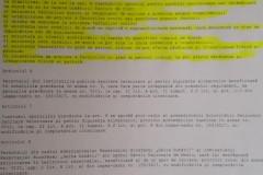Regulament-cadru-pag.1